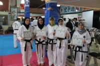 First International Seminar on Technical Promotion in ITF Taeckwon-Do for Women, Tehran, 24, 25 Dec. 2017